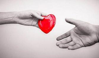 organ bağışı, organ nakli, organ bağışı nedir